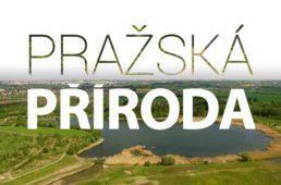 prazska-priroda-nahledovy